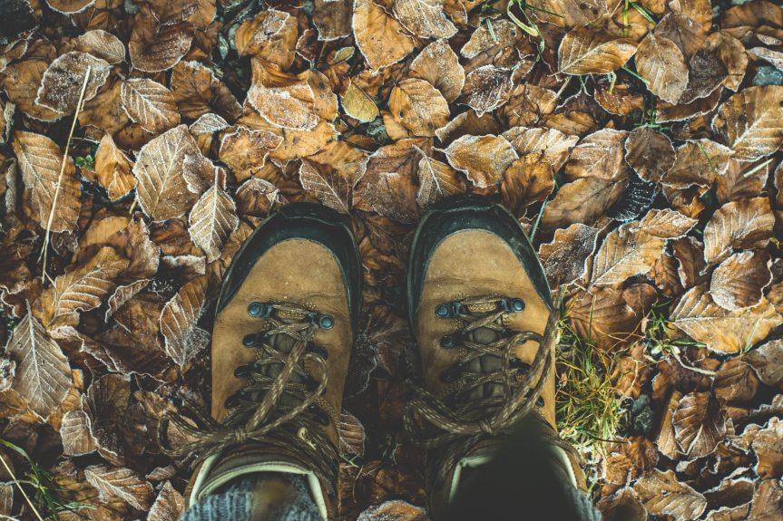 autumn-boots-brown-284711.jpg