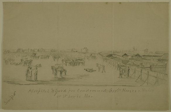 Pencil_Drawing,__Hospital_and_Yard_for_Condemned_Gov't_Horses_and_Mules_at_St._Louis,_Mo.__by_Alexander_Simplot.jpg